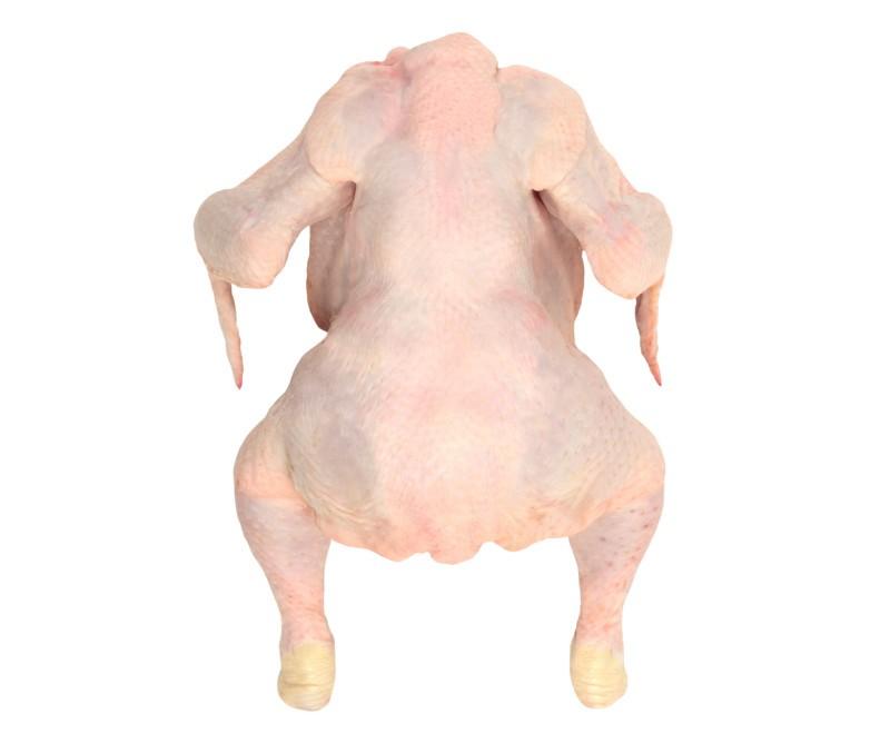 Pollo entero 1,20 - 1,30 kg/pieza (1 caja de 12 piezas)